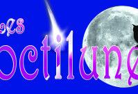 Logo Les noctilunes